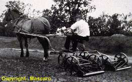 Horse powered triplex gang mower.