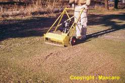 In 1955 Tom Mascaro invented the Verti-Cut to eliminate grain and reduce thatch, it revolutionized how golf was played.