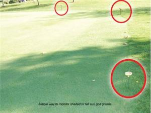 Using Daylight Indicator - Light Meter to monitor shaded areas of golf greens
