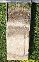 The Turf-Tec Mascaro Profile Sampler not only has an easy open hinge, but allows a full 7 inch deep sample to be taken from all soil types.
