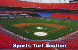 Click here to go to Sports Turf Managers Section. Sports field section. Find out how to assess problems like compaction and wear. In addition the pages will give solutions to many sports turf and athletic field questions.
