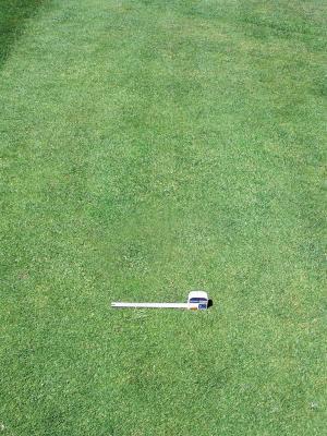 Disease areas can be seen before they become visually apparent with the Turf Stress Detection Glasses.