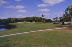 Key Biscayne Golf Course, Key Biscayne, FL a week before the Royal Caribbean Seniors tournament.  Carlos McKeon is Golf Course Superintendent.