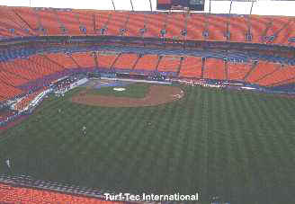 Sports Field - Pro Player Stadium - Marlins World Series 1997 - Sports Field Analysis Section.  The Following are Common Problems that Sports Turf Managers Face.